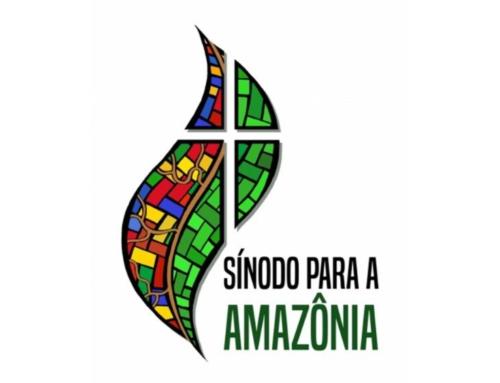 Zámer a metóda Synody o Amazónii